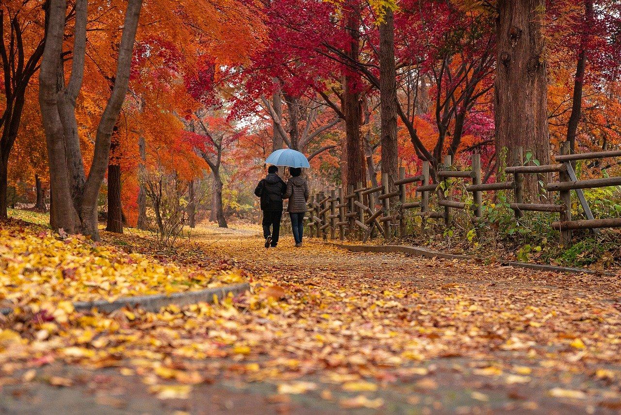 couple_automne